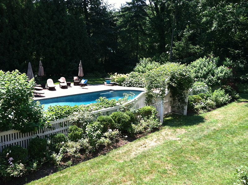 landscaping around large pool