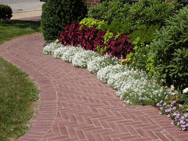 paved red brick pathway