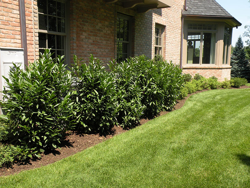 Landscaping On Side Of House : Wrights mill landscaping vernon hills corp